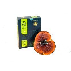 trà nấm lim xanh linasa